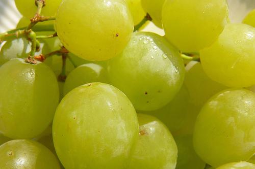 Refreshing Grapes